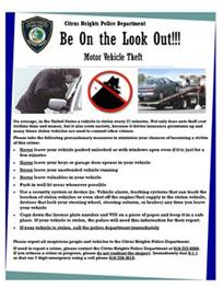 Vehicle Theft Prevention